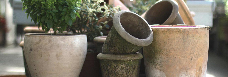 krukker-i-urtehagen